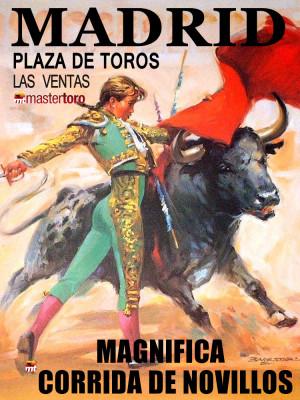 bullfight madrid novillada